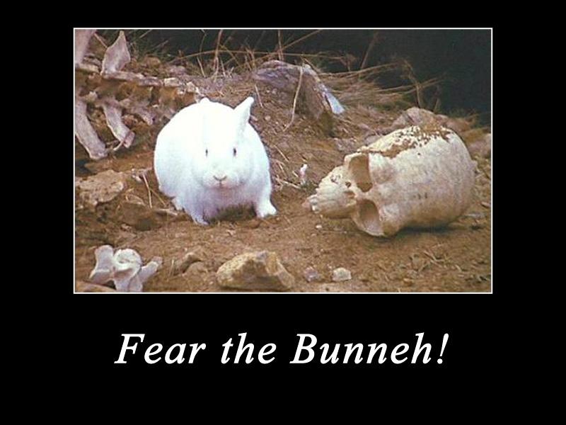 Fear the Bunneh